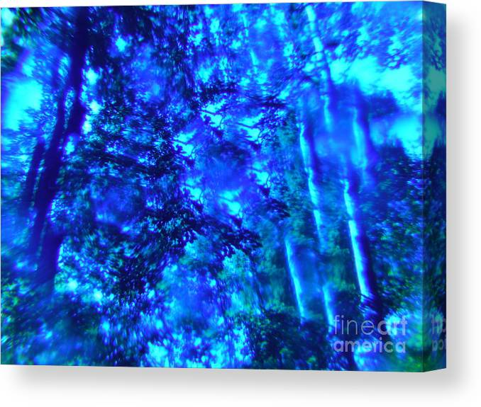 Color To Color Series Canvas Print featuring the photograph Color To Color Series 19 by Paddy Shaffer