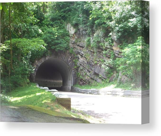 Landscape Canvas Print featuring the photograph Entering The Tunnel by Rosanne Bartlett