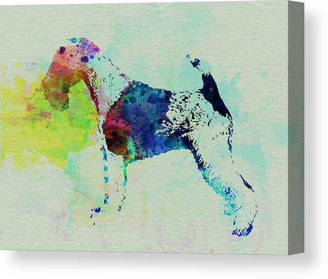 Fox Terrier Canvas Prints | Fine Art America