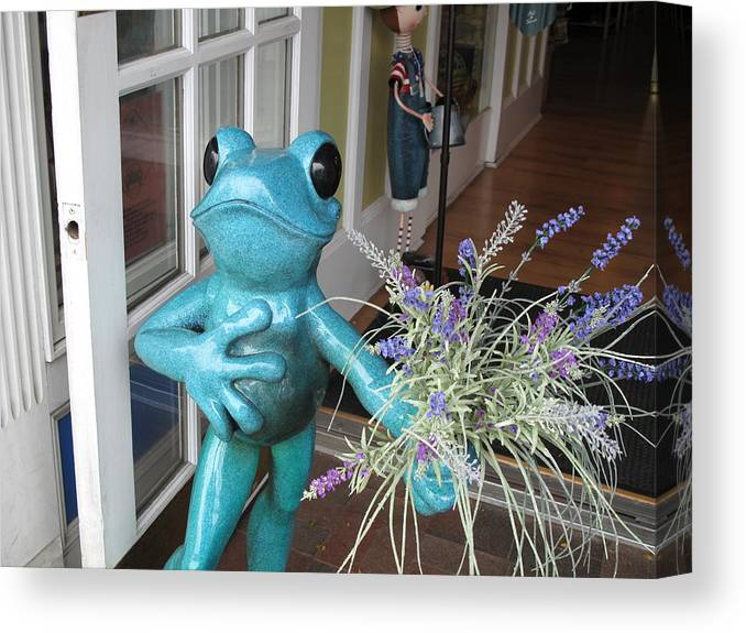 Frog Canvas Print featuring the photograph Frog Suitor by Barbara McDevitt