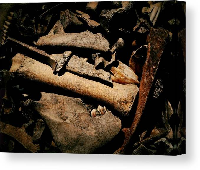 Relics Canvas Print featuring the photograph From The Bone Yard 1 by Nadalyn Larsen