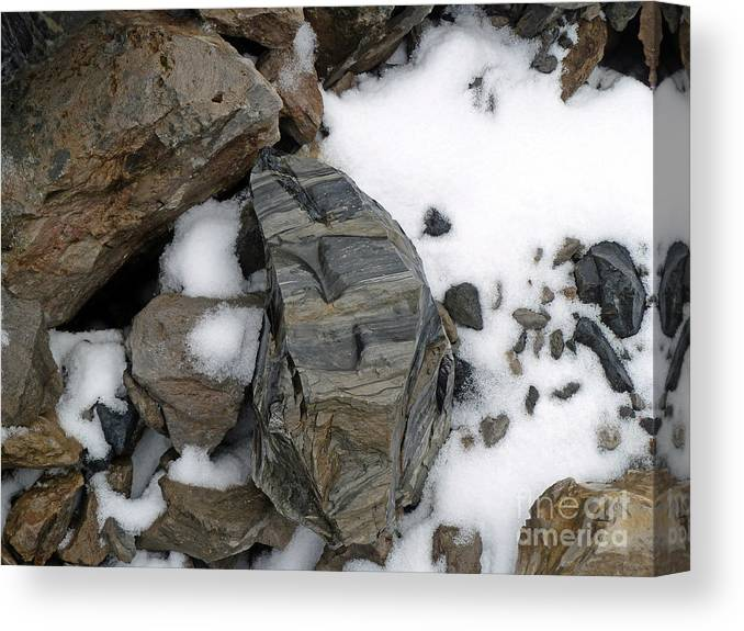 Rocks Canvas Print featuring the photograph Gift From The Earth by Jill Tucker