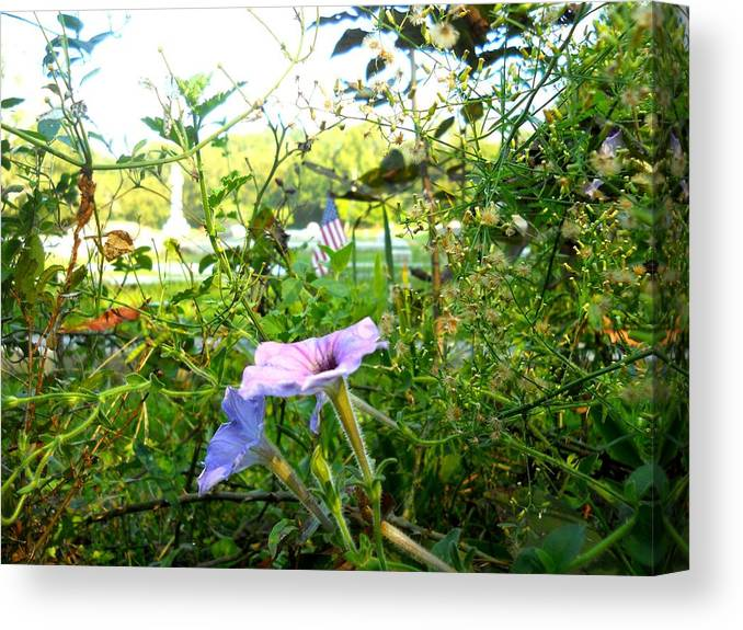 Grave Canvas Print featuring the photograph Grave Flower by Shelby Lawrence