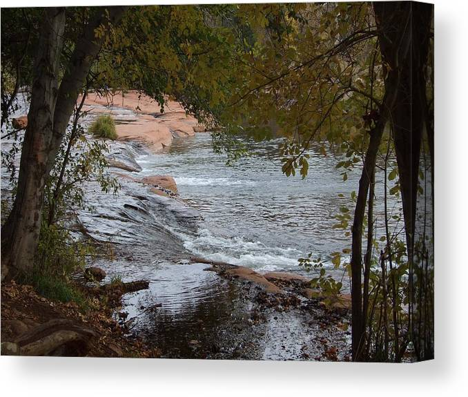 Landscape Canvas Print featuring the photograph Hidden Brook by Judith Russell-Tooth