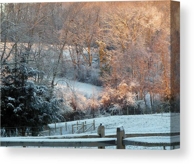 Snow Canvas Print featuring the photograph It's A Beautiful Morning by Rabiah Seminole