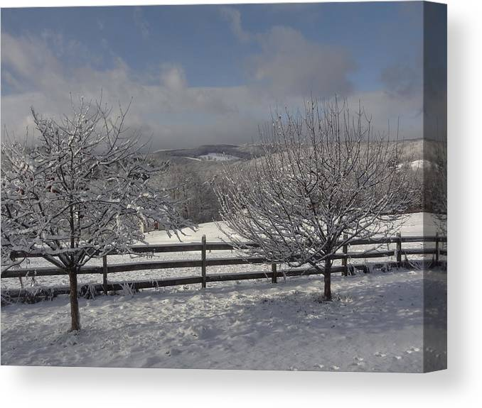Apple Trees Canvas Print featuring the photograph Kedron Valley After A Snow by Mark J Curran