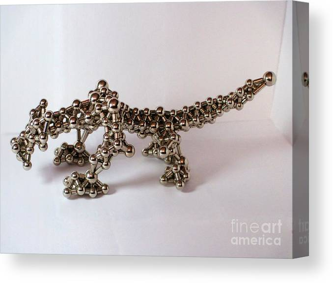 Magnet Canvas Print featuring the photograph Magnetic Dragon by Mark Teeter