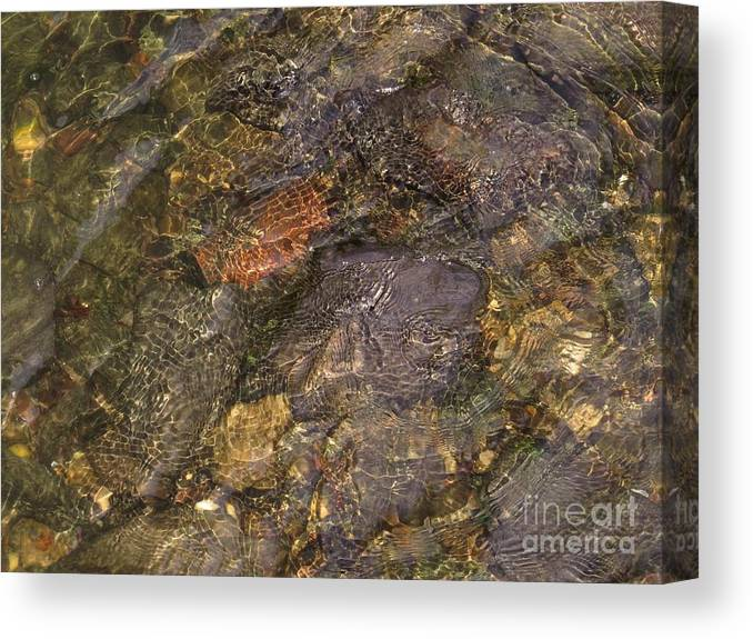 Water Canvas Print featuring the photograph Mothers Abstract 06 by Rrrose Pix