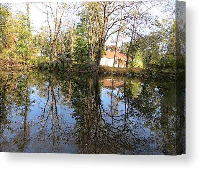 Reflection Canvas Print featuring the photograph Natural Mirror by Sonali Gangane