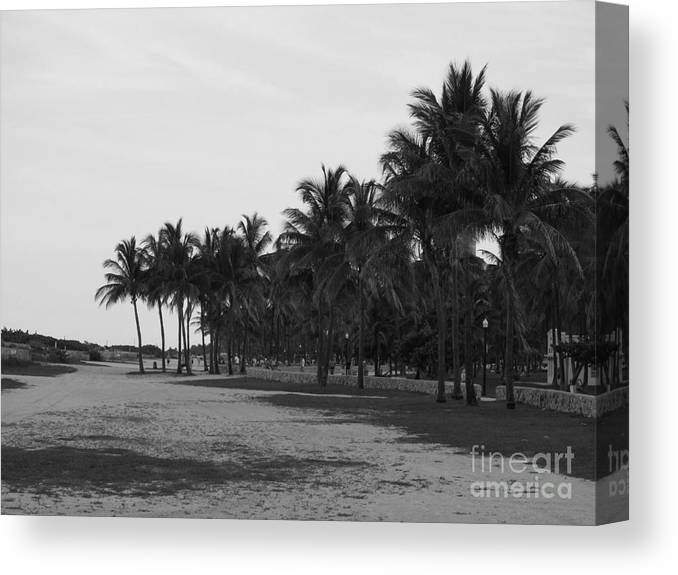 Canvas Print featuring the photograph Playa Del Sur by Zoe Vega Questell
