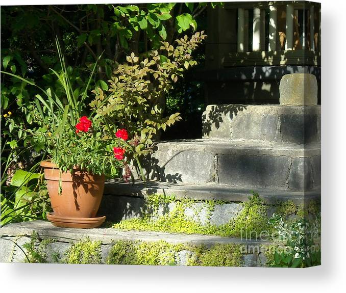 Flowers Canvas Print featuring the photograph Pretty Gardens by Line Gagne