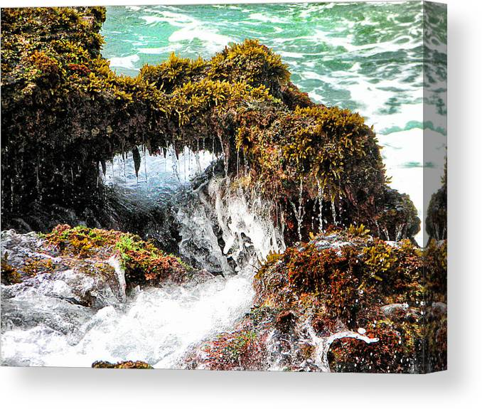 Sea Canvas Print featuring the photograph Reef At Sa Beach by Ronel Broderick