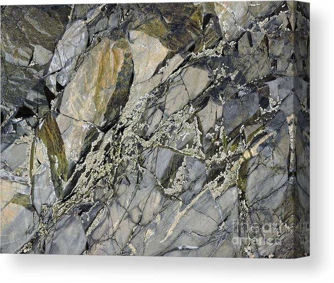 Marcia Lee Jones Canvas Print featuring the photograph Rock Of Ages by Marcia Lee Jones