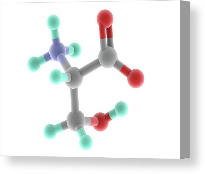 Artwork Canvas Print featuring the photograph Serine Molecule by Alfred Pasieka/science Photo Library