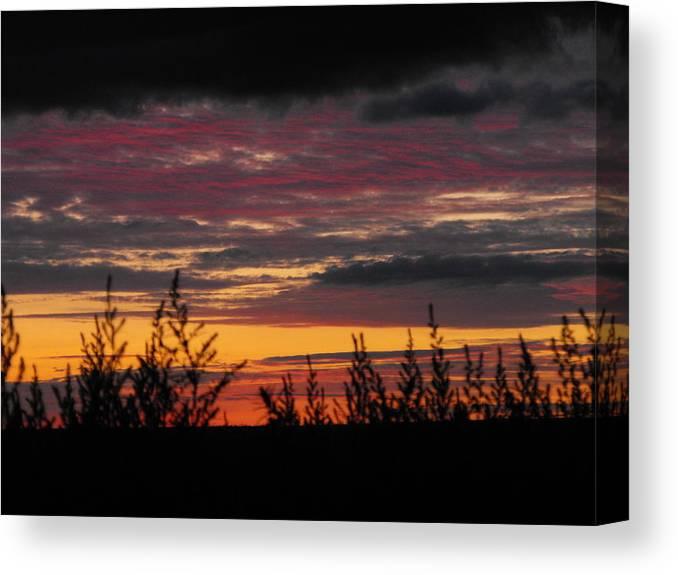 Landscape Canvas Print featuring the photograph Sky Colours by Penny Homontowski