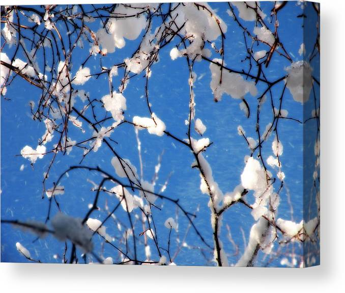 Snow Canvas Print featuring the photograph Snow And Sky by Joseph C Santos