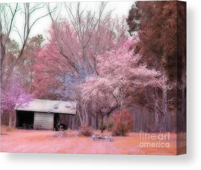 South Carolina Photographs Canvas Print featuring the photograph South Carolina Pink Fall Trees Nature Landscape by Kathy Fornal