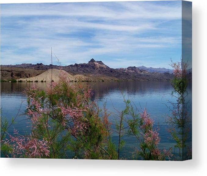 Landscapes Canvas Print featuring the photograph Spring Lake Mohave by Douglas Miller