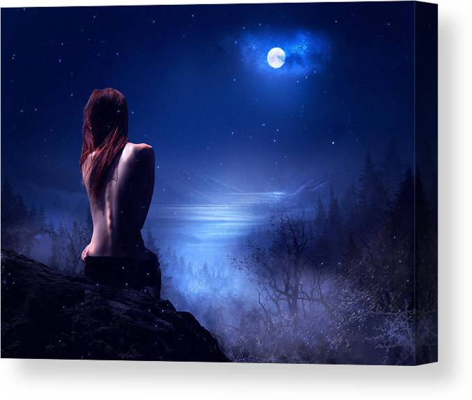 Fantasy Canvas Print featuring the digital art Starry Night by Lisa Mccullough