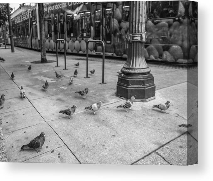 Tram Max Subway Birds Town City Street Bus Transportation Landscaper Canvas Print featuring the photograph Street Car by W i L L Alexander