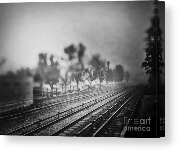 Long Canvas Print featuring the photograph The Long Road by Angelo Merluccio