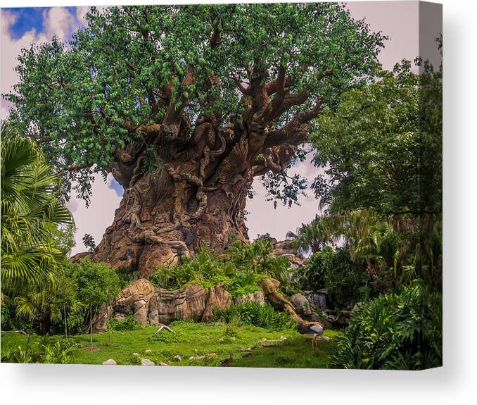 Tree Of Life Canvas Print featuring the photograph The Tree Of Life by Zina Stromberg