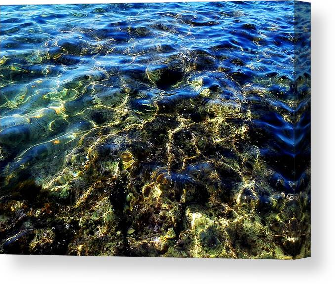 Nature Canvas Print featuring the photograph Water by Eva Kuneva
