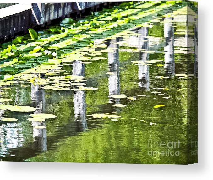 Water Canvas Print featuring the photograph Water Green by David Fabian