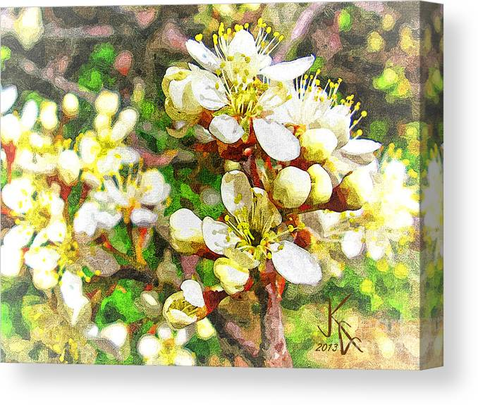 Nature Canvas Print featuring the digital art Wild Plum Flower by John K Giarratano