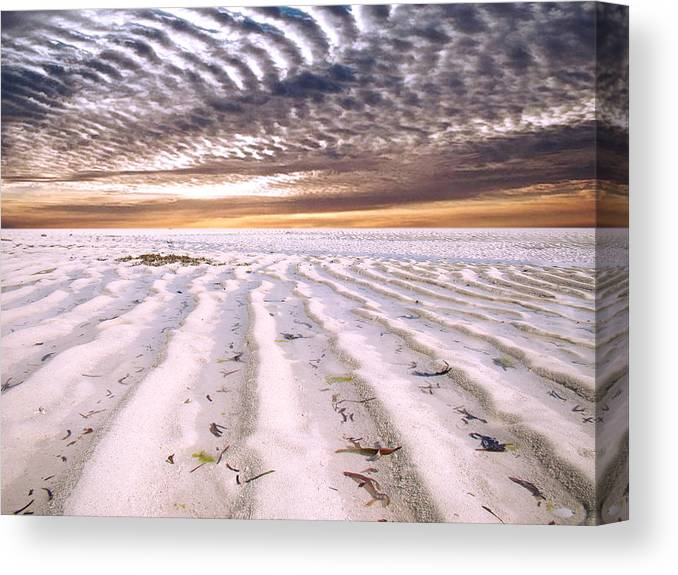 Zanzibar Canvas Print featuring the photograph Zanzibar Low Tide 05 by Giorgio Darrigo