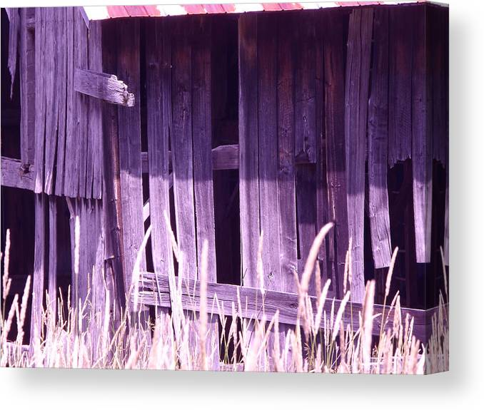 Barn Canvas Print featuring the photograph Beauty In The Rough by Jim Beattie
