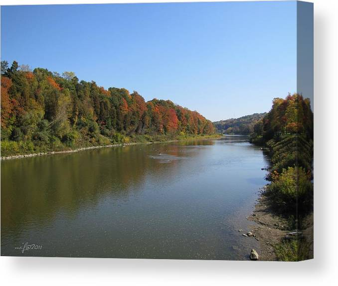 Fall Canvas Print featuring the photograph Fall Colors In London Ontario 7782 by Maciek Froncisz