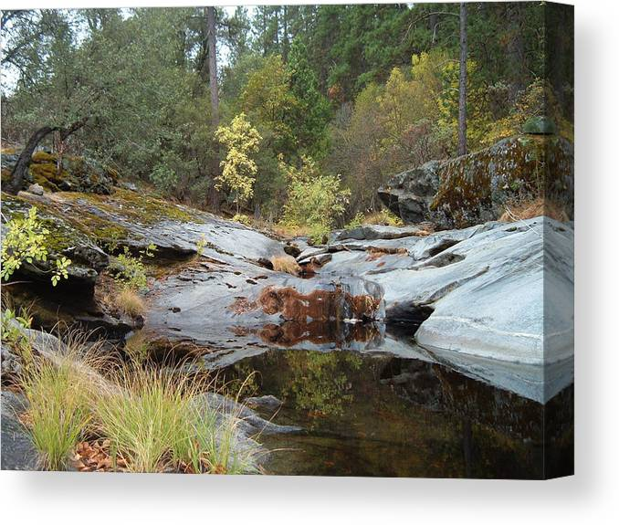 Nature Canvas Print featuring the photograph Lake In The Forest 1 by Naxart Studio
