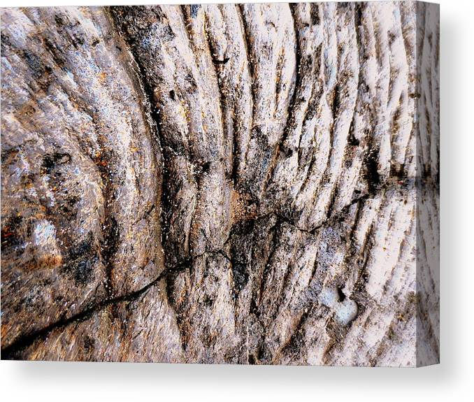 Canvas Print featuring the photograph Lava Design by Vicente Russo