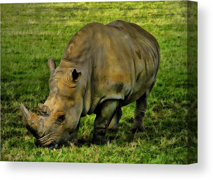 Rhinoceros Canvas Print featuring the painting Rhinoceros 101 by Dean Wittle