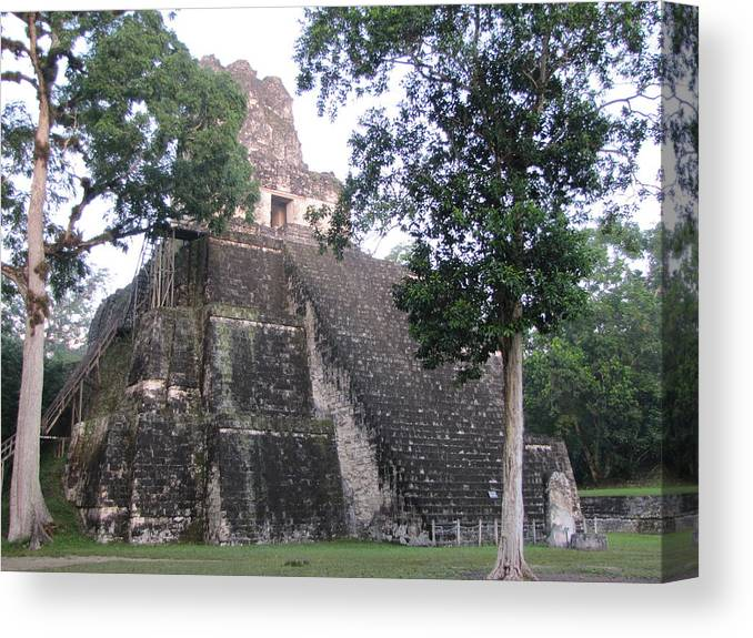 Guatemala Canvas Print featuring the painting Tikal And Its Pyramids by Stewart Haile