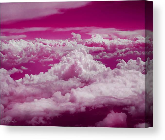 Canvas Print featuring the photograph  by Cindy Greenstein