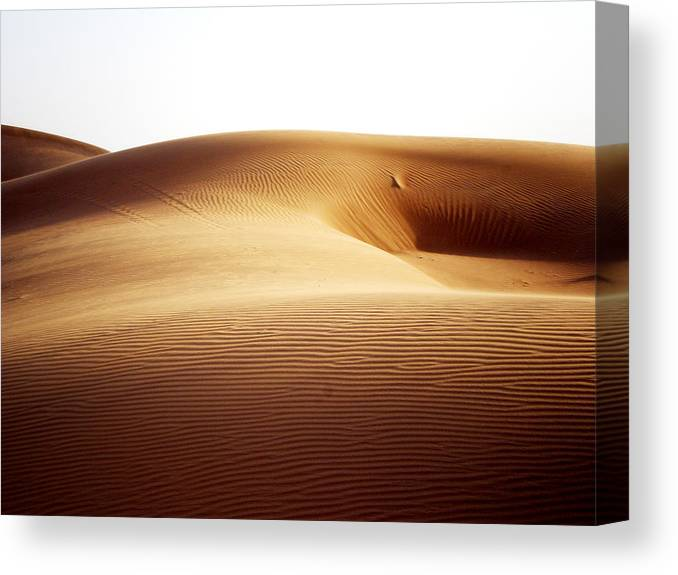 Sand Canvas Print featuring the photograph 08021 by Jeffrey Freund