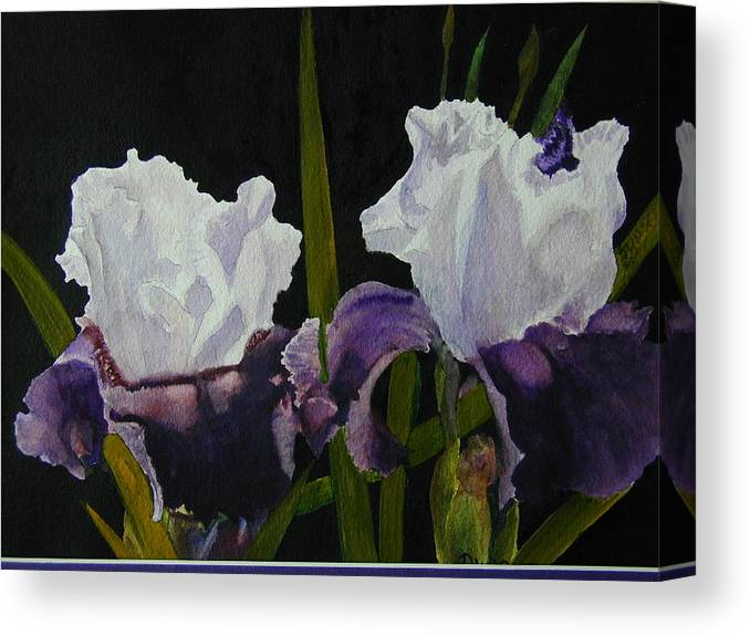 Flowers Canvas Print featuring the painting Iris by Dwight Williams