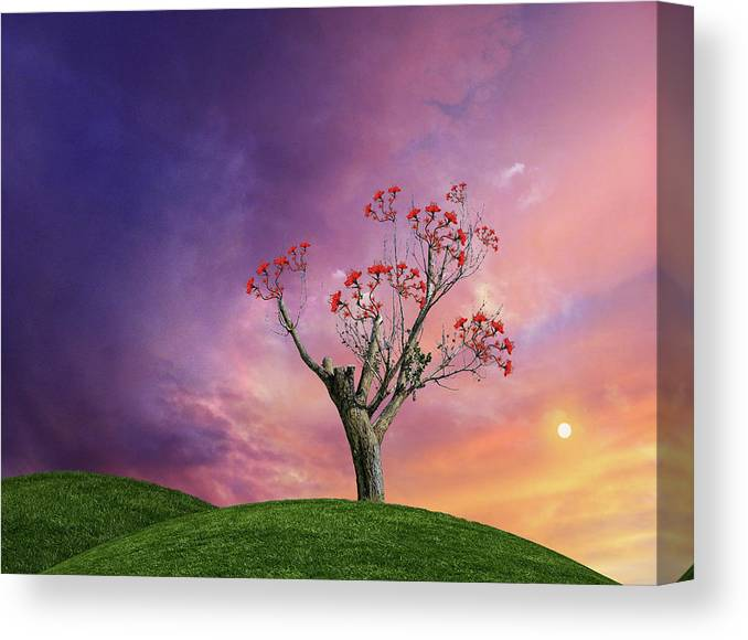 Desert Canvas Print featuring the photograph 4451 by Peter Holme III