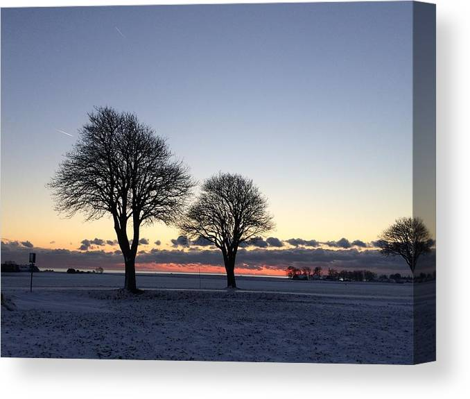 Trees Canvas Print featuring the photograph A Clear Day by Anna-Lena Tideman