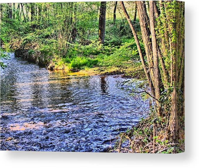 Harrison Canvas Print featuring the photograph A Moment To Myself by Kathy Tarochione