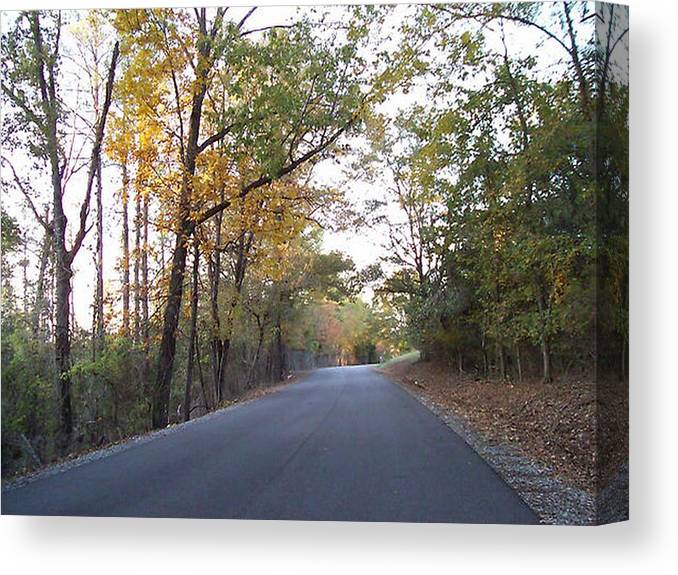 Road Canvas Print featuring the photograph Alabama Backroads by Paula Ferguson