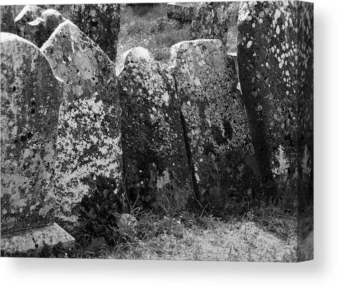 Ireland Canvas Print featuring the photograph All In A Row At Fuerty Cemetery Roscommon Ireland by Teresa Mucha