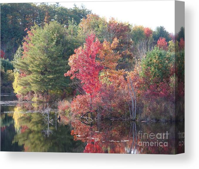 Autum Leaves Canvas Print featuring the photograph An Autum Day by Robyn Leakey