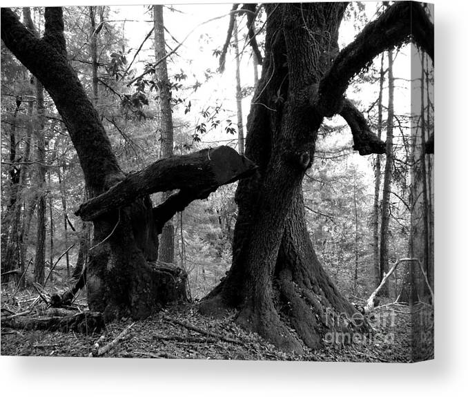 Black And White Canvas Print featuring the photograph An Old Game Of Freeze Tag by JoAnn SkyWatcher