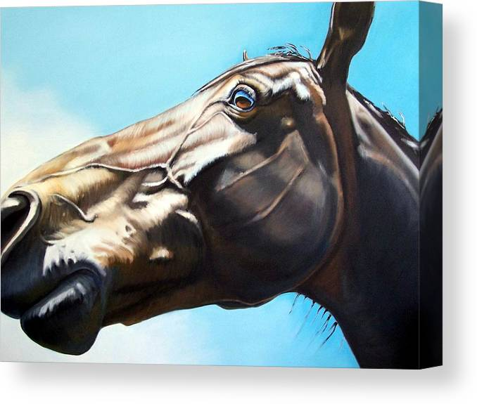 Horse Canvas Print featuring the painting Arc by Steve Messenger