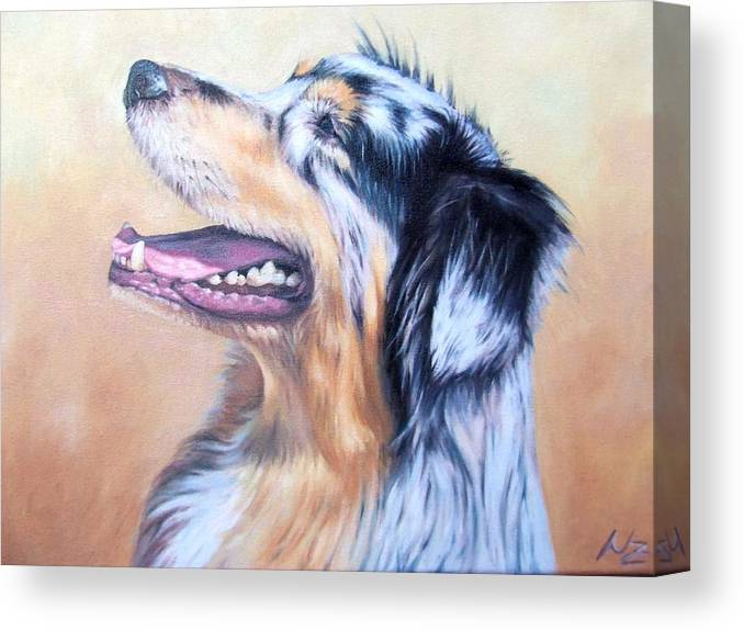 Dog Canvas Print featuring the painting Australian Shepherd Dog by Nicole Zeug
