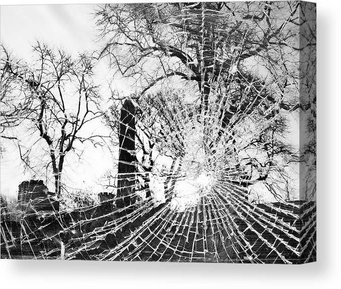 Black And White Canvas Print featuring the photograph Broken Trees by Munir Alawi