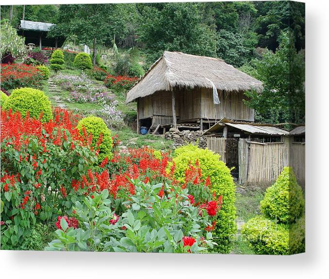 Flower Canvas Print featuring the photograph Burma Village by John Johnson